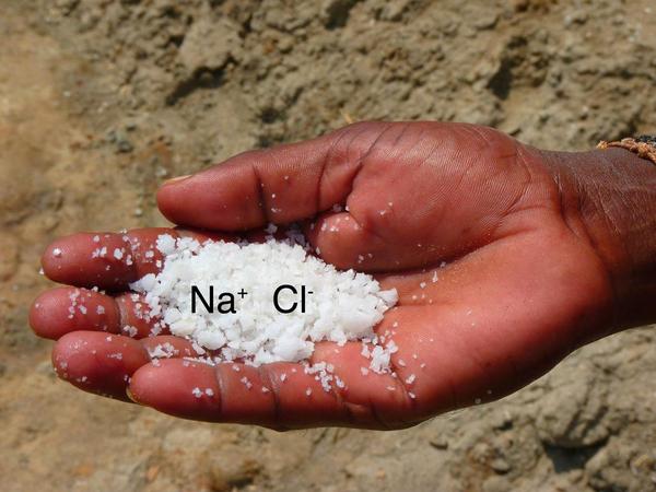 NaCl   ioner